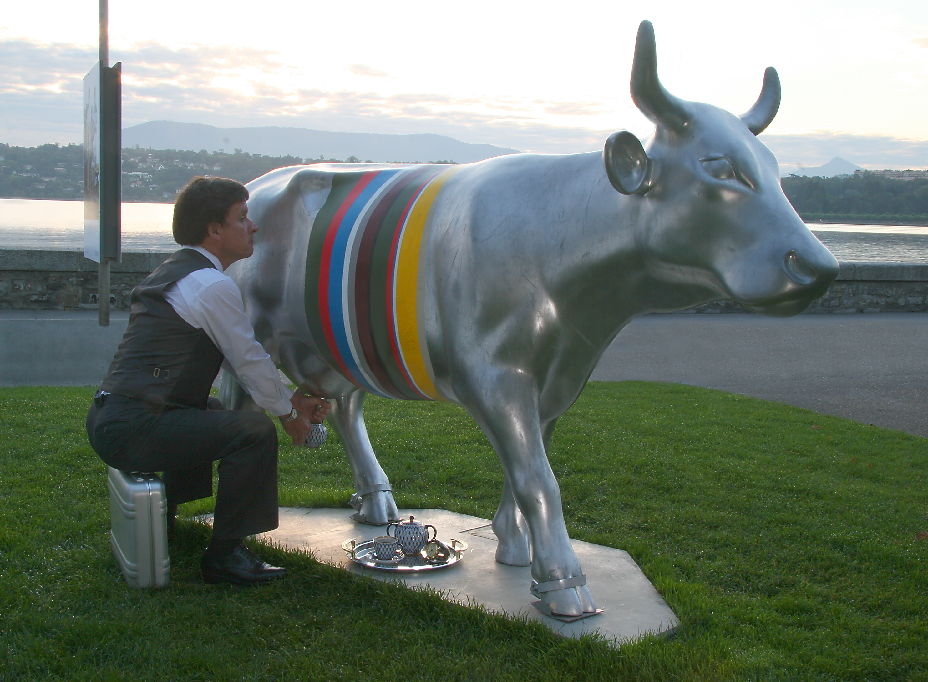 Cow photo competition winner, Geneva Switzerland.jpg - Cow photo competition winner