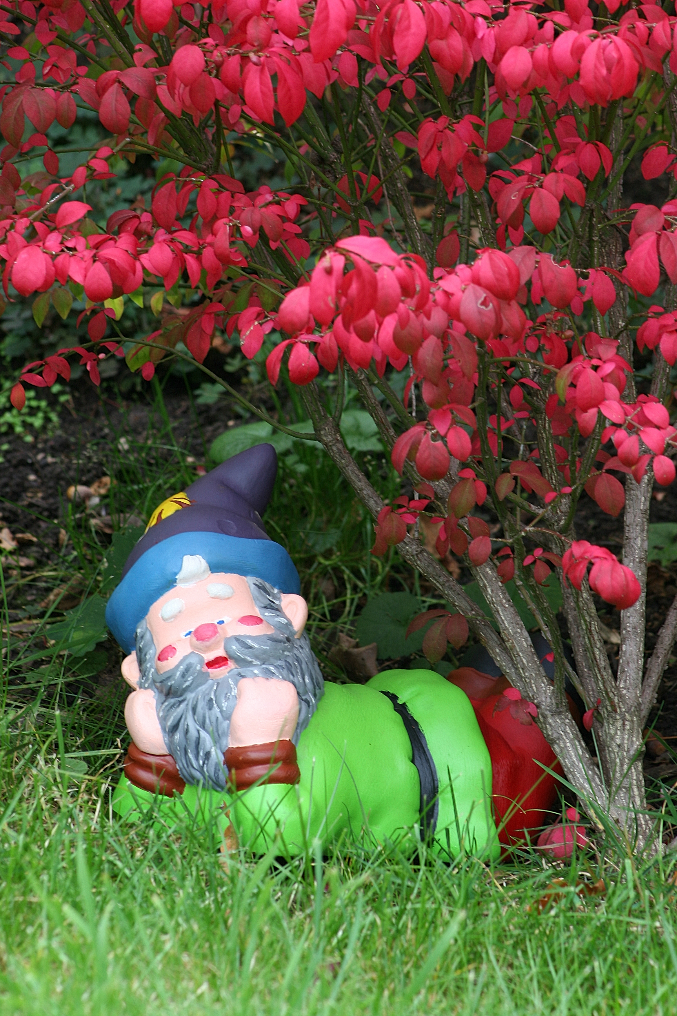 Garden gnome, Vessy Switzerland.jpg - Garden gnome