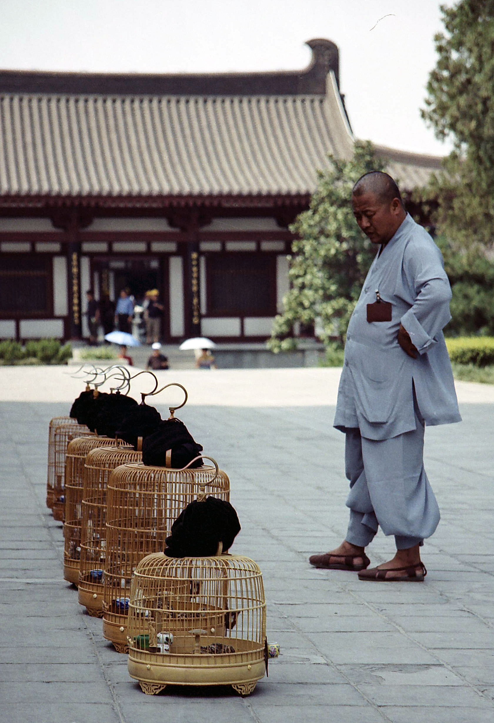 bird seller, Xian China.jpg